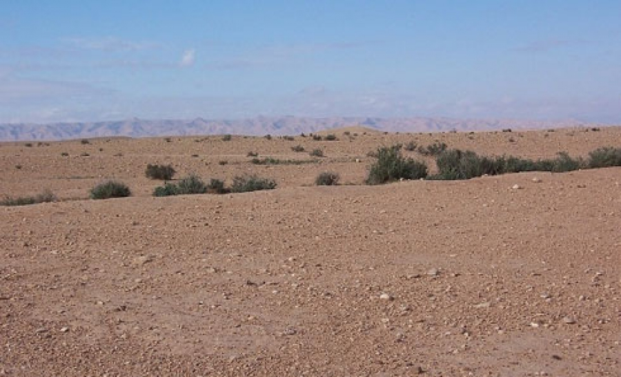Des Migrants meurent dans le désert — Niger