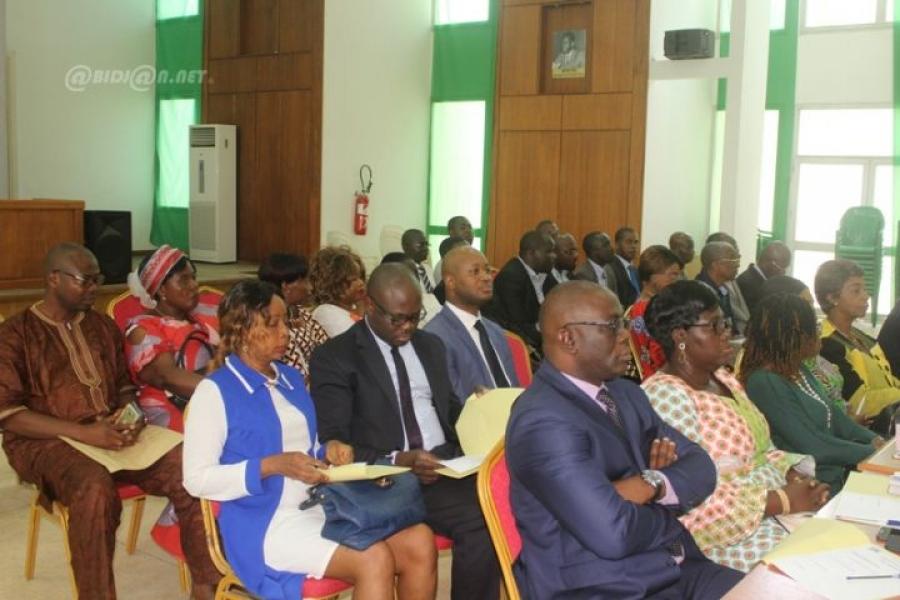 Côte d'Ivoire/ Elections sénatoriales : la liste RHDP présentée à la population d'Assuéfry