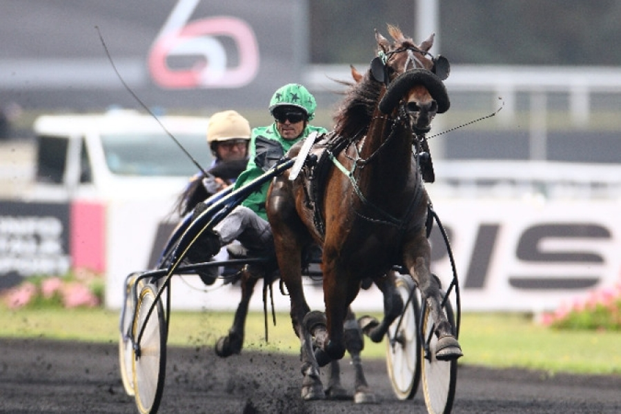 Grand Prix de Bretagne : 15 partants