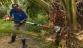 Palmier à huile: La Suisse offre un cent...