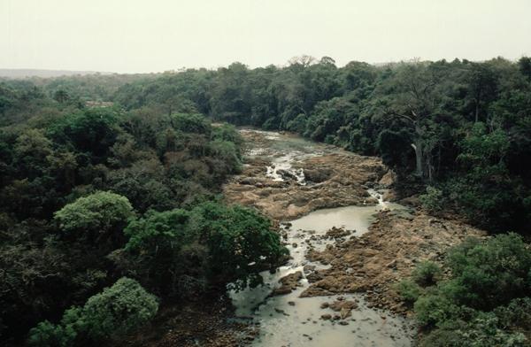 Une vue d'un cours d'eau