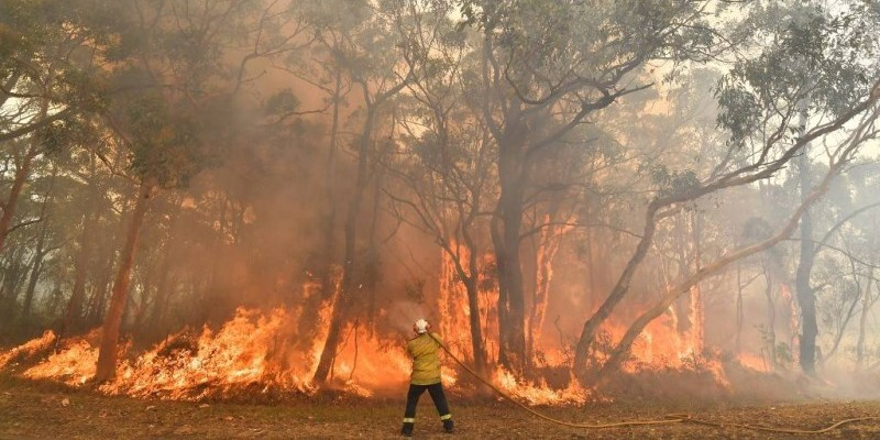 "This photo taken on December 10, 2019 shows a firefighter conducting back-burning measures to secure residential areas from encroaching bushfires in the Central Coast, some 90-110 kilometres north of Sydney. - Toxic haze blanketed Sydney on December 10 triggering a chorus of smoke alarms to ring across the city and forcing school children inside, as ""severe"" weather conditions fuelled deadly bush blazes along Australia's east coast. (Photo by SAEED KHAN / AFP)"
