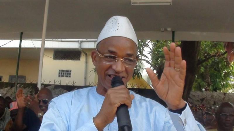 Cellou Dalein Diallo, Président de l'UFDG et Chef de file de l'Opposition en Guinée