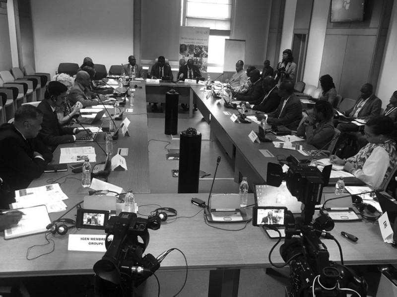 La réunion du Groupe des partenaires du programme (Ppg) sur le projet Enea s'est déroulée au siège de la Bad, au Plateau. (DR)