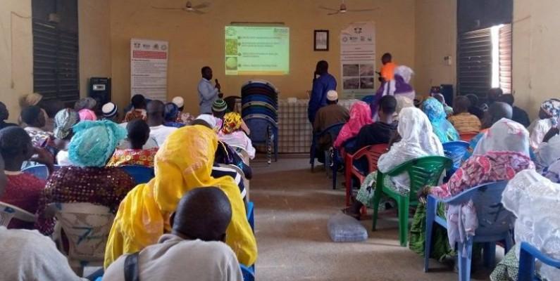 Les participants à l'atelier de restitution des résultats du FCIAD. (AIP)