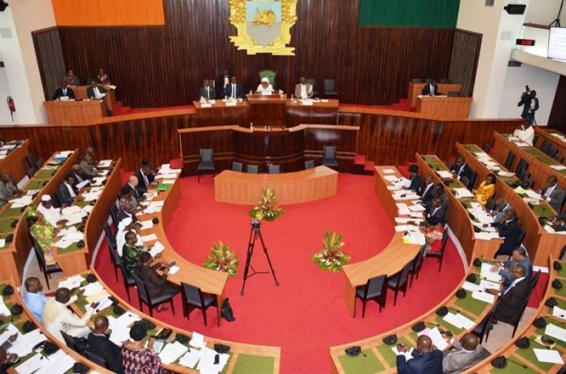 L'assemblée nationale. ( DR)
