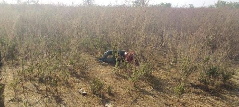 Un corps sans vie découvert samedi dans la broussaille, non loin de l'ancien hôpital général de Tengrela. (AIP)