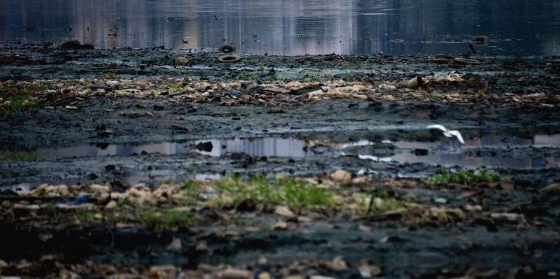 Des déchets sur la lagune Ebrié. ( DR)