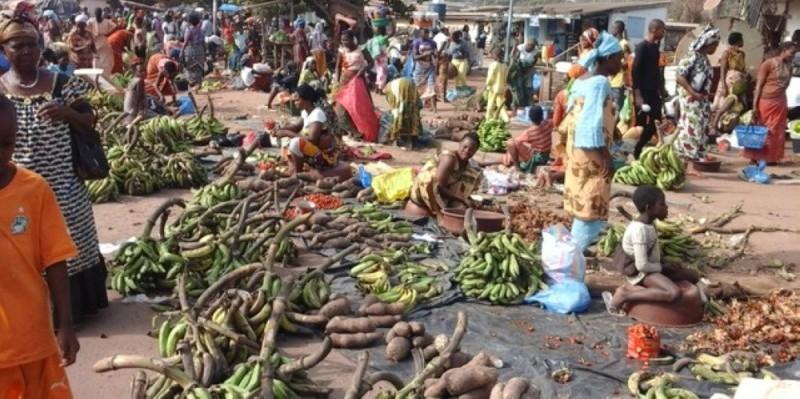 Les acteurs du secteur vivrier assurent que les marchés ivoiriens seront toujours fournis en produits. (Dr)