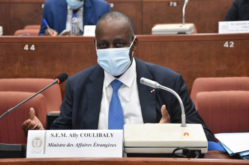 Le ministre Ally Coulibaly a expliqué aux sénateurs l'importance des huit projets de loi. (DR)