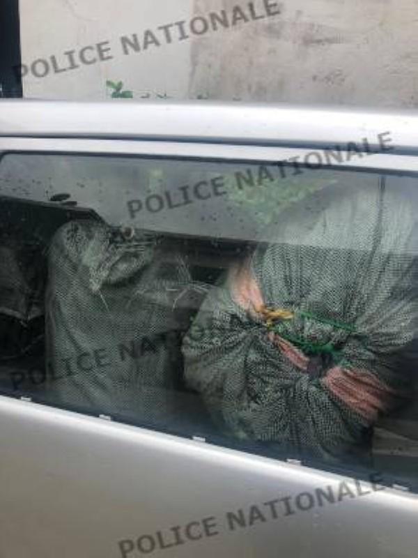 La drogue saisie dans le coffre du véhicule de l'Ong. (DR)