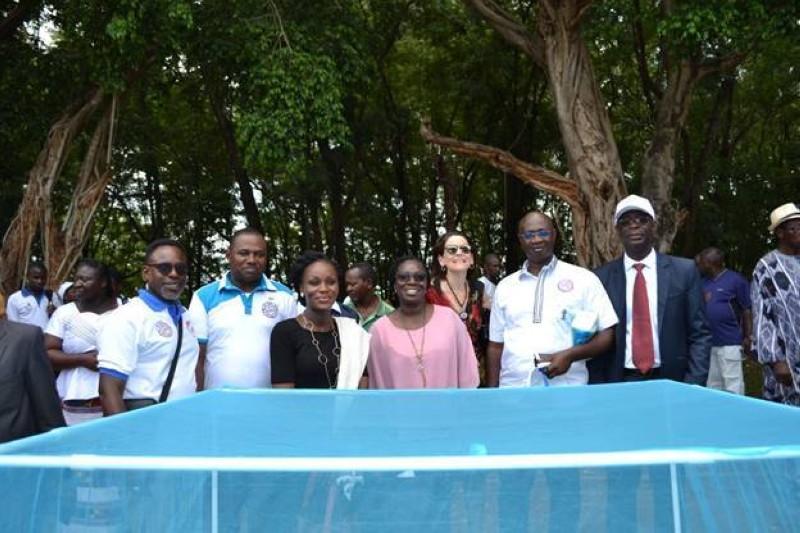 Archives.  L'équipe PMI/Côte d'Ivoire, La Représentante Pays de l'USAID et le Directeur du PNLP avec des partenaires lors d'une activité PMI