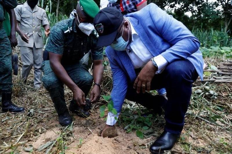 Le cantonnement forestier d'Alépé et la Sifca engagés à sauver le couvert forestier de la région. (DR)