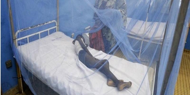 Un malade sous une moustiquaire. (DR)