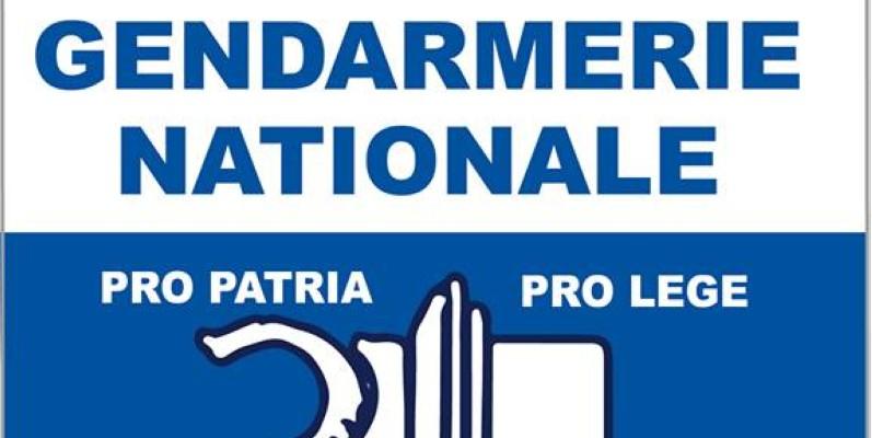 Le logo de la gendarmerie nationale. (DR)