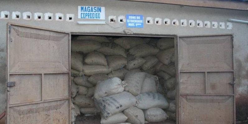 Le magasin de stockage de produits est devenu exigu du fait de la hausse de la production de l'anacarde. (Véronique Dadié)