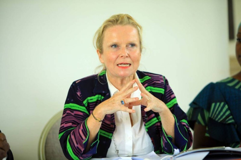 Anne Lemaistre du Pnud. (DR)