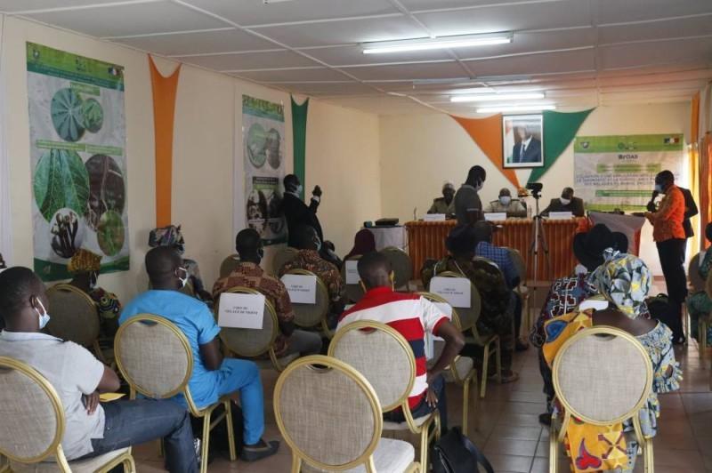 Les acteurs de la filière manioc à Jacqueville et Dabou. (DR)
