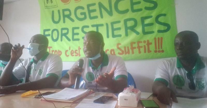 Urgences Forestières s'est réunie pour tirer la sonnette d'alarme sur la déforestation. (photo : Dr)