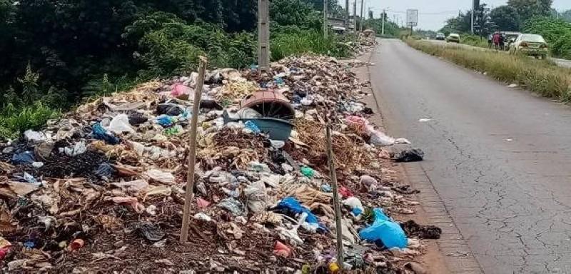 L'équipe municipale a décidé de débarrasser la ville des ordures (DR)