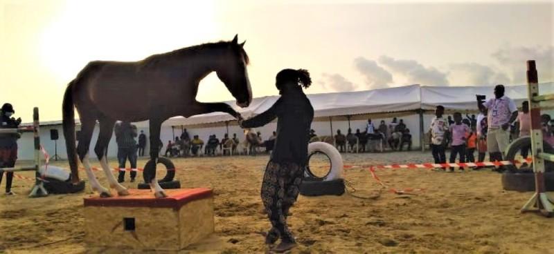 Camara Malahidy, l'art du cheval chevillé au corps. (DR)