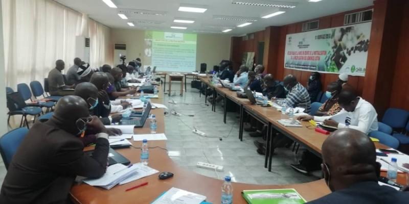 Les acteurs de la filière coton ont dégagé les perspectives qui permettront d'améliorer les acquis. (Photo : DR)