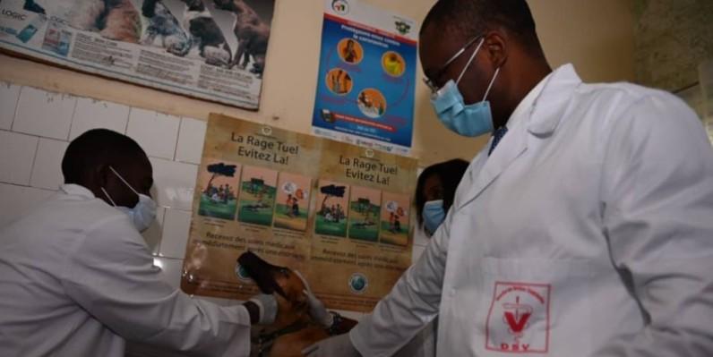 Le coup d'envoi de la campagne de vaccination a été donné sur ce chien par le ministre Sidi Touré. (DR)