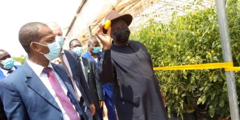 Kobenan Kouassi Adjoumani, présentant avec fierté une tomate en maturité coupée sur les lieux de production à l'Infpa. (DR)